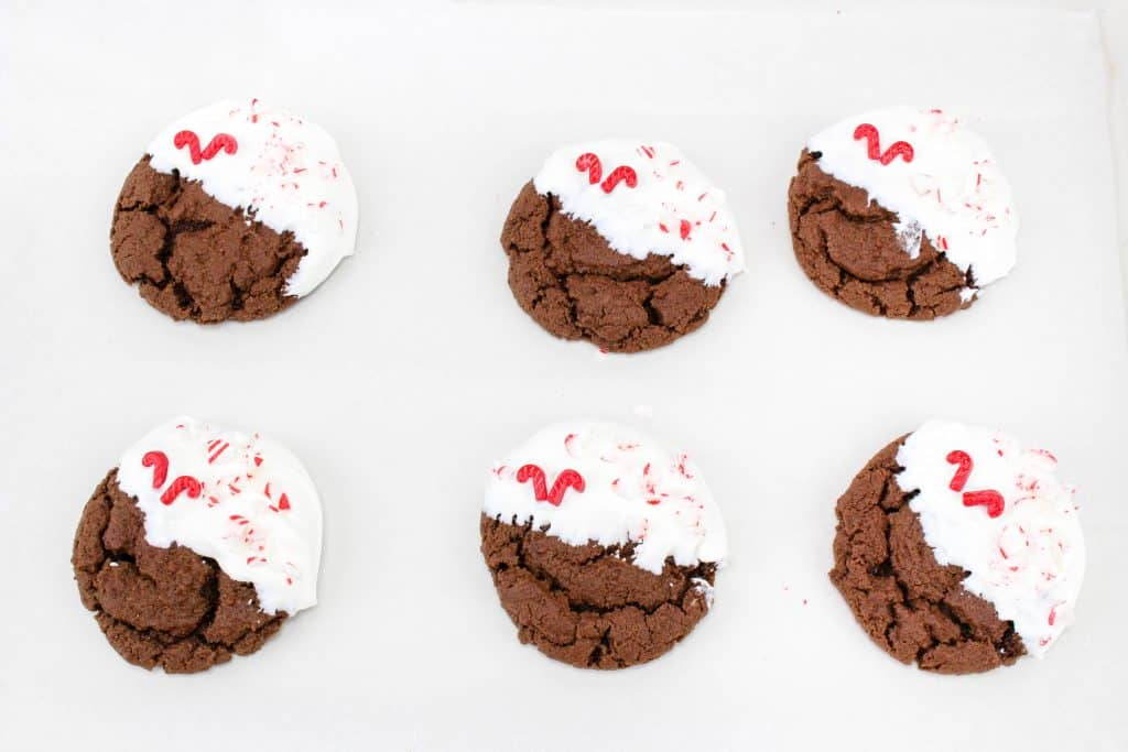 Peppermint Chewy Chocolate Cookies