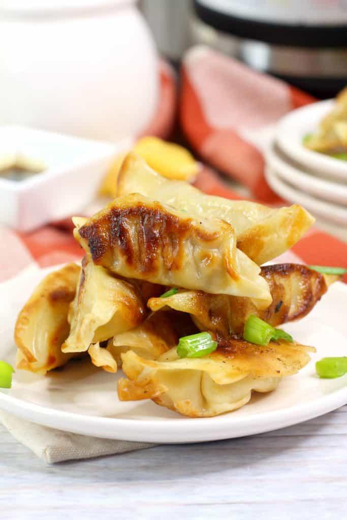 Instant Pot Chinese Dumplings