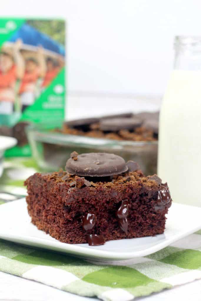 Thin Mint Poke Cake Slice