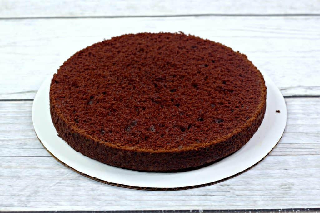 Single Layer of Chocolate Cake