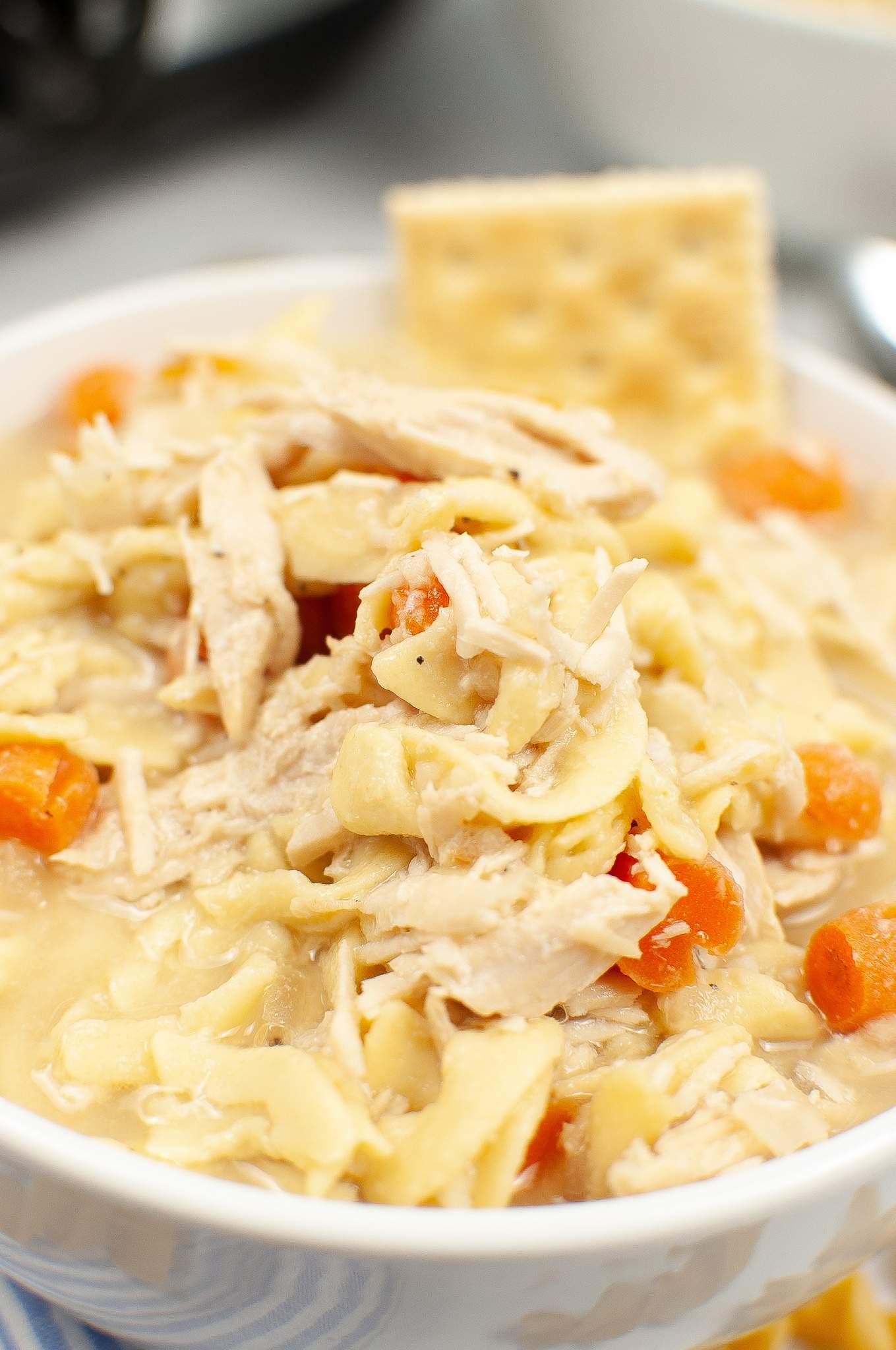 close up of turkey noodle soup
